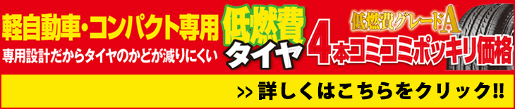 201704コミコミポッキリ(軽自動車・コンパクト)